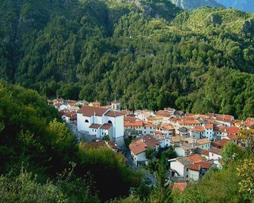 Un'immagine di Avasinis, tratta dal video